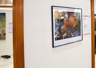 camino por las artes exposiciones casa de la provincia de buenos aires (7)