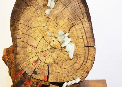 camino por las artes exposicion arte objeto de buena madera ungs -obras (30)