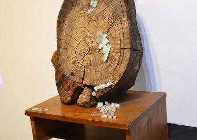 camino por las artes exposicion arte objeto de buena madera ungs -obras (41)